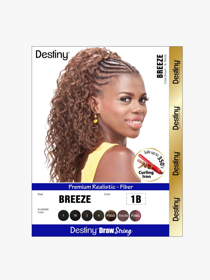 DS-BREEZE-4