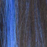 fr1b-blue